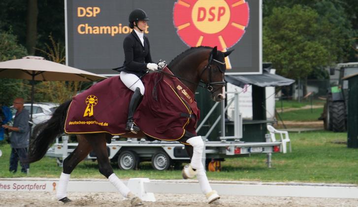DSP Desandro - Nördlingen 2016